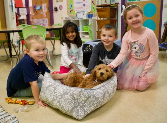 Students in Carrie Naparella's kindergarten class at Journey Charter School in Ripon benefit from the schools' new puppy, a golden doodle named Shelby. From left are Colter Reinsch, Kartiki Field, Keith Meeks and Ava Boede. Shelby is in training to be a therapy dog.