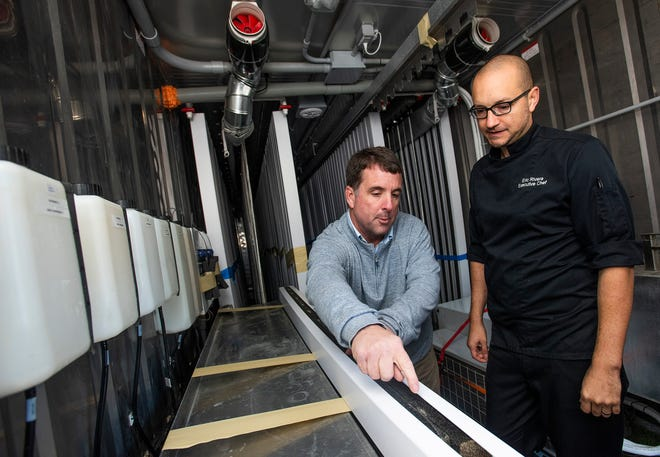 Vintage Year owner Jud Blount, left, and Executive Chef Eric Rivera show their new hydroponic container garden that is being set up to grow fresh vegetables for the Vintage Year restaurants in Montgomery, Ala., on Tuesday November 19, 2019.