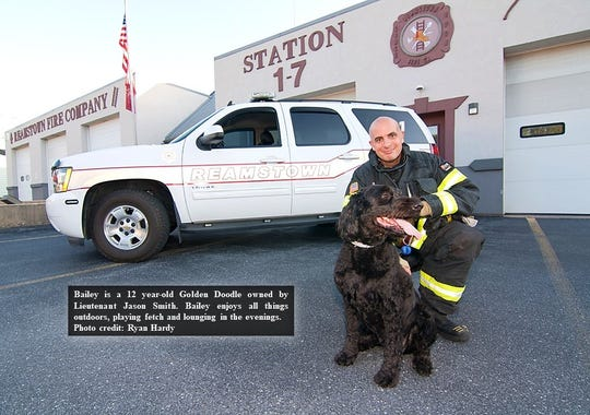 Members of the Reamstown Fire Company in Lancaster County posed with their animals to produce a calendar for a fundraiser.