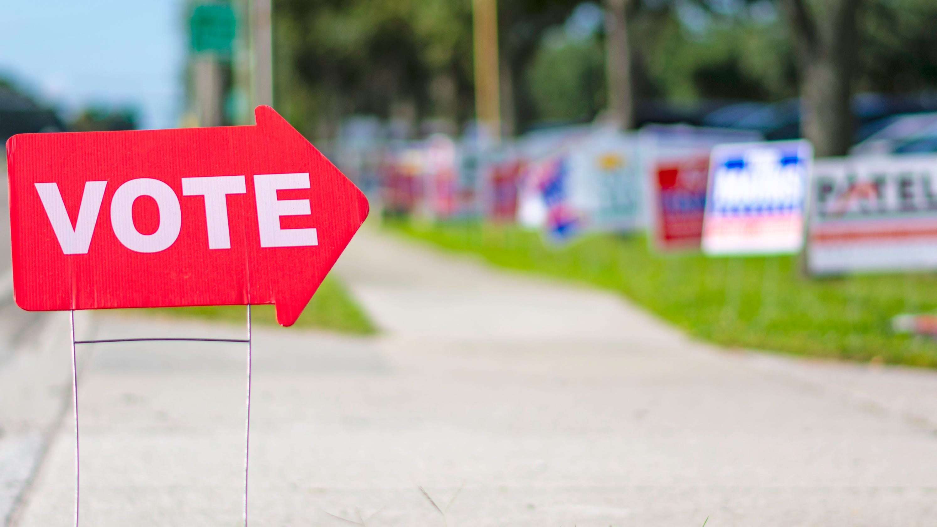 Who is on your ballot? Monroe County candidate list for the 2020 election