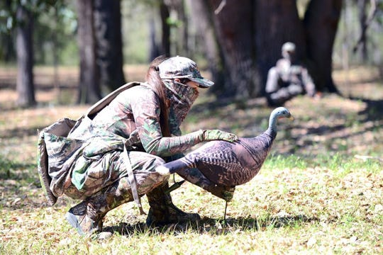 Lots of detail, like setting up a decoy in the right position, goes into Florida wild turkey hunting. Project support from the National Wild Turkey Federation around the state has helped produce stabilizing populations of the Florida Osceola sub species. Photo courtesy Florida Fish and Wildlife Conservation Commission.