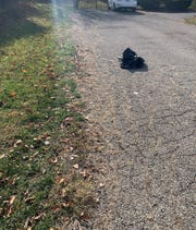 Mt. Healthy Police find puppy in a garbage bag Tuesday.