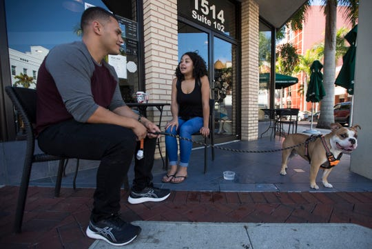 Boulder, a 1.5-year-old English Bulldog, accompanies his owners Bionca Martinez and Angel Ramirez, both of Fort Myers, during an afternoon visit to Starbucks in downtown Fort Myers.