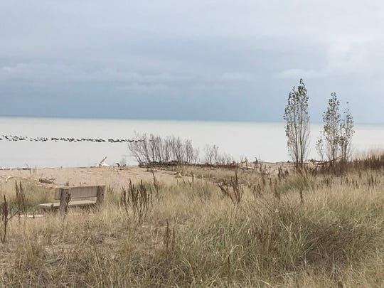A section of the beach along the Lake Michigan shore in Kewaunee would be turned into Beach Park under a proposed project in the city's Harbor Master Plan approved last month by the City Council