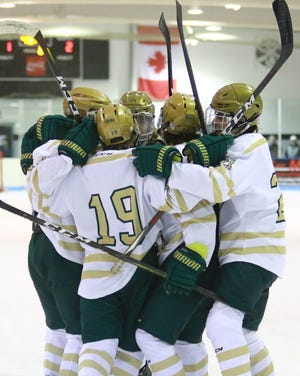 Howell hockey players celebrate their second goal during a 4-3 victory over Novi on Tuesday, Nov. 19, 2019.