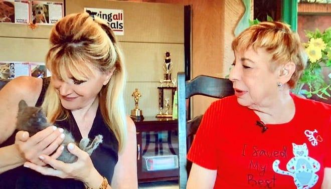 Sandie Newton cradles a kitten as foster volunteer Roz Landesman looks on.