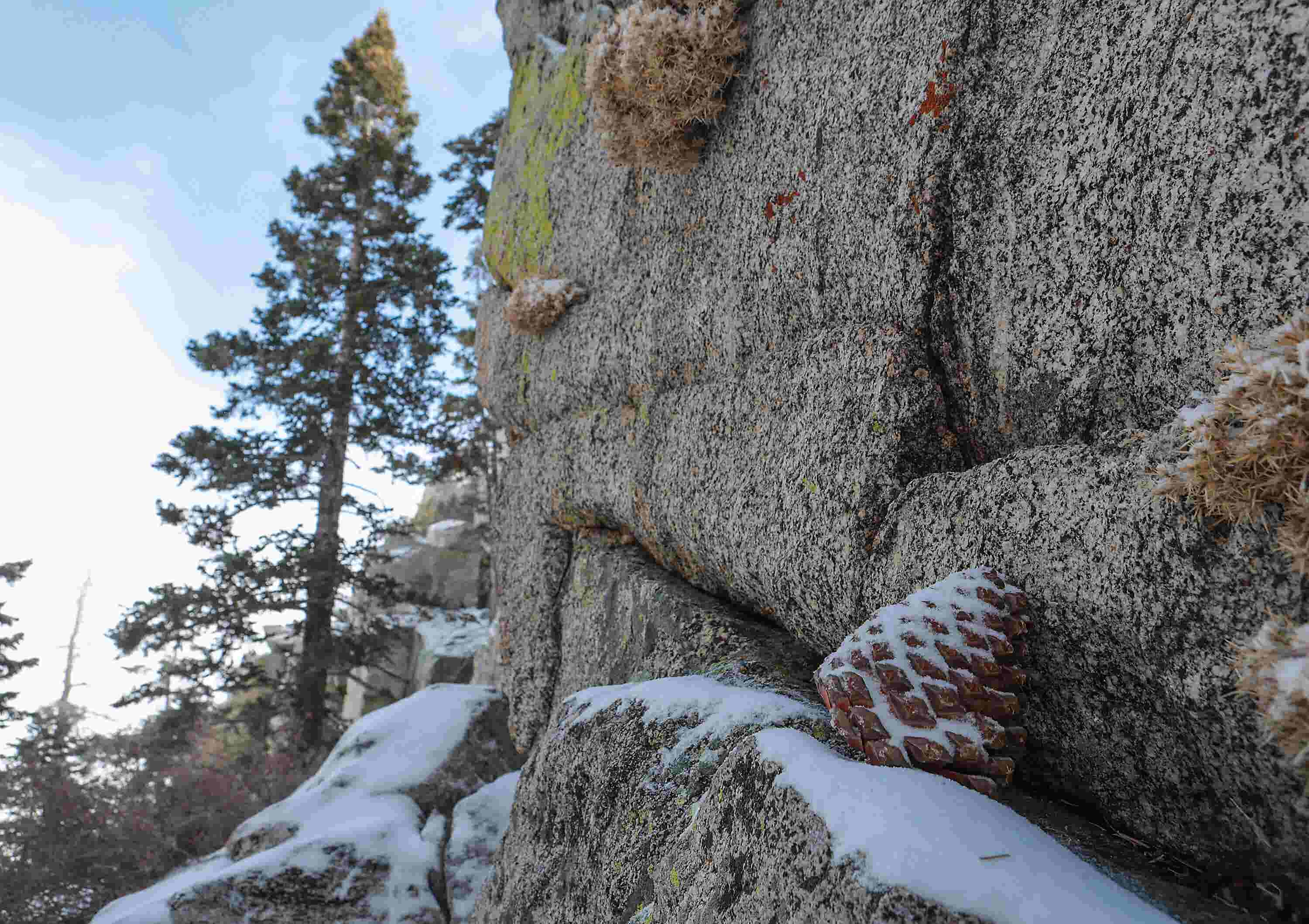 Palm Springs Aerial Tramway announces Snow Guessing Contest winners