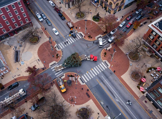 York City's Christmas tree arrives on Continental Square from Springettsbury Township, Wednesday, November 20, 2019.John A. Pavoncello photo