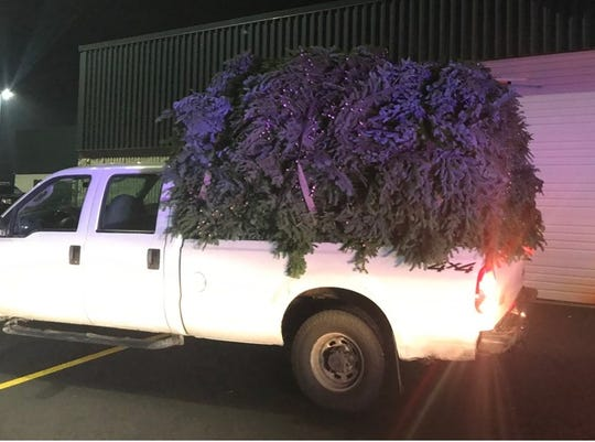 Two Washington County men were arrested Tuesday and charged with cutting and taking 3,800 pounds of fir boughs from the Willamette National Forest.
