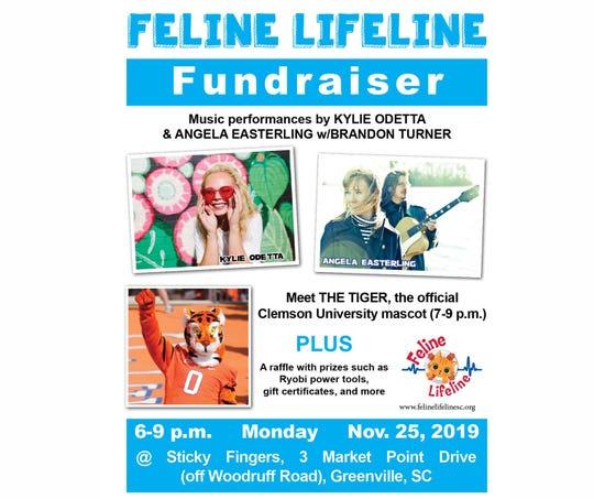 Feline Lifeline fundraiser event poster