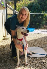 Buncombe County Animal Shelter employee Caitlin Bingham poses with one of the dogs the facility has taken in. In 2018, the shelter took in 6,173 dogs, cats, and other animals. Its partner, the Asheville Humane Society, adopted out 3,840 animals last year. Additionally, BCAS reunited 1,117 animals with their owners last year.