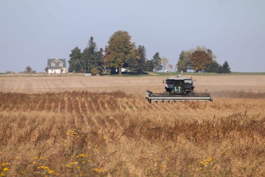A farmer harvests his crops near Ubly, Michigan in the Thumb.