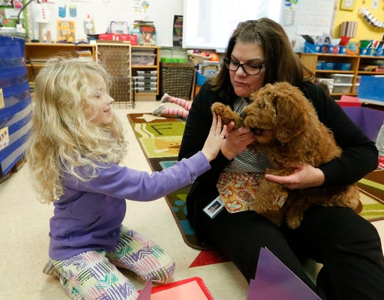 Kindergarten student Sophie Yoder gives Shelby, a therapy dog in training, a high five Nov. 21, 2019, at Journey Charter School in Ripon Wis. while Shelby's handler and school teacher Carrie Naparalla watches.