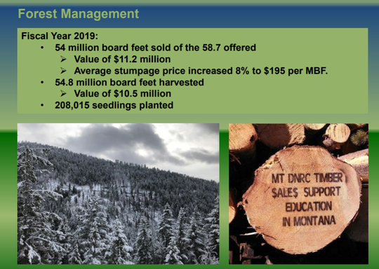 This graphic shows forest management figures for FY 2019, according to Trust Land Management.