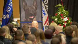 'A true hero': Hundreds honor slain Fishers K-9