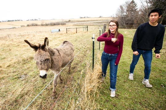 Students Gillie Schmidt-Quee, second from right, and Tom Kuo visit with a donkey named Tom, Wednesday, Nov. 20, 2019, at Scattergood Friends School in West Branch, Iowa.