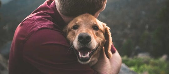 Animal Samaritans is an animal-focused nonprofit that connects pets with people.