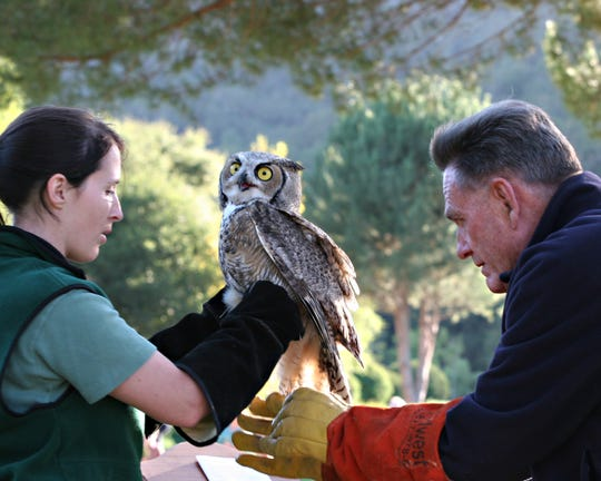 "Scott Delucchi, Executive Director, SPCA for Monterey County said ""Charles de Guigné was a true friend to the SPCA for many years and was especially drawn to our mission of rescuing neglected and abused animals."" In this provided photo,  Charles de Guigné  helps release a rehabilitated owl at SPCA for Monterey County's Wild Celebration."