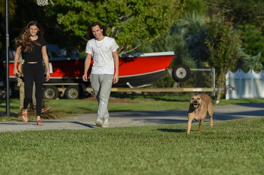 Brandi Bragdon, 17 (left), and her boyfriend Tyler Pratt, 19, walk Kiki in front of Brandi's parents house on Tuesday, Nov. 19, 2019, in Palm City. Kiki, formerly owned by Jeff and Nancy Kirsch, who both passed away earlier this year, was adopted by Brandi and stays with Brandi at her parent's home and at Tyler's home.