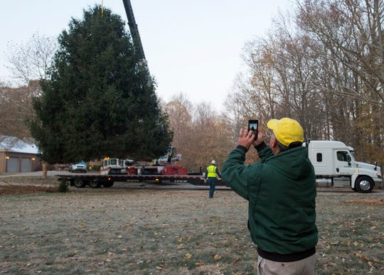 Kenny Mesker takes a photograph of his 36-foot-tall, 30-foot-wide Norway Spruce as it's lifted in the air during the removal Friday morning, Nov. 15, 2019. Mesker donated the tree for Evansville's official Christmas tree.