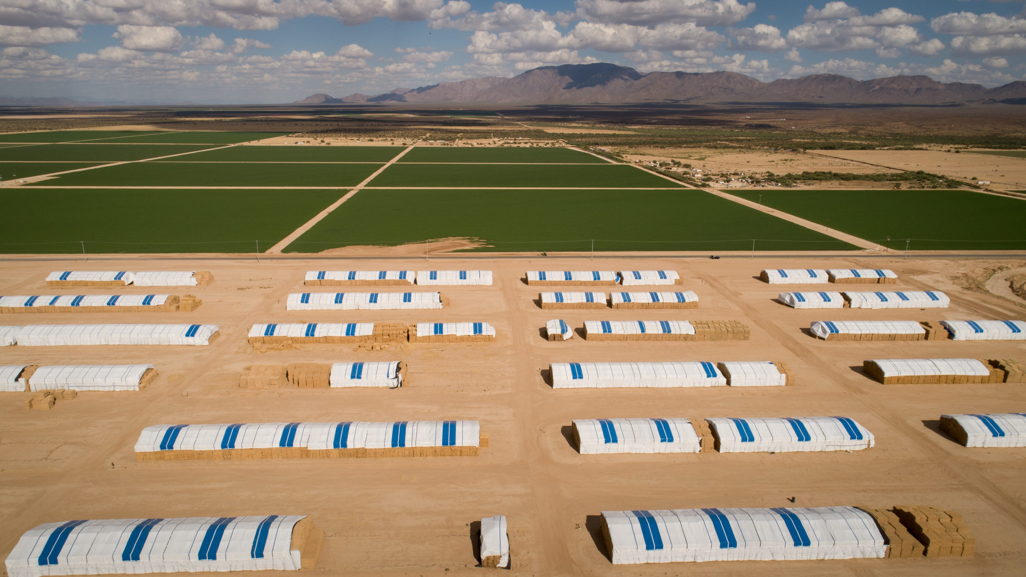 Megafarms and deeper wells are draining the water beneath rural Arizona – quietly, irreversibly