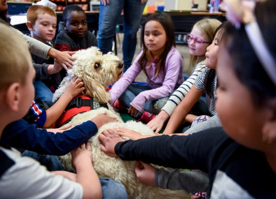 Christina Godshall's first grade class pets Maggie the goldendoodle on Friday, Nov. 22, 2019, at Hayward Elementary School.