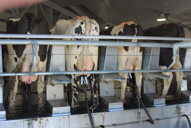 Wisconsin dairy farmers and other producers are feeling the impact of trade uncertainty caused bythe coronavirus outbreak.