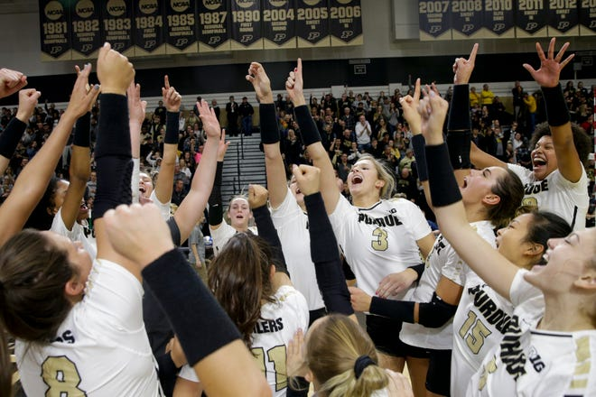 Purdue celebrates sweeping Michigan, 3-0 (25-17, 25-22, 29-27), Saturday, Nov. 23, 2019 at Holloway Gymnasium in West Lafayette.