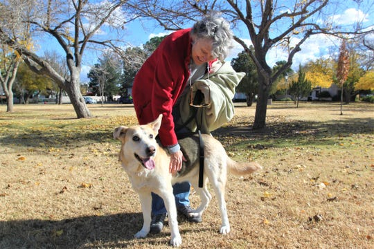 Chris Wydra pets Gracie at Pioneer Women's Park on Friday, Nov. 22.