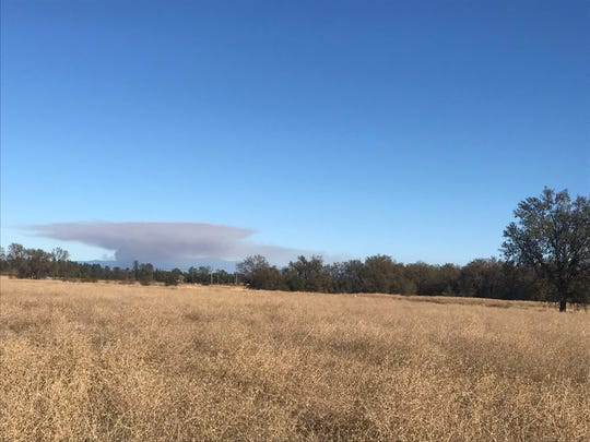 Smoke from a control burn south of Oak Run drifts into Anderson in this November 23, 2019 picture.