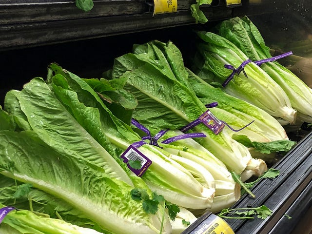 Wisconsin Officials Find E Coli In Salinas Valley Bagged