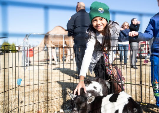 Julis Roque,7, pets baby goats at the petting zoo during the Shelby County bicentennial celebration at Shelby Farms Park in Cordova, Tenn., on Sunday, Nov. 24, 2019.