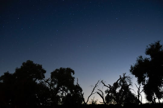Stars light up the night sky during a star party outside Arthur Pursell Observatory on Saturday, Nov. 23.