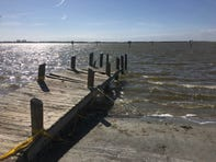"""The Indian River Lagoon has taken on a more brownish color in recent years, as """"brown tide"""" algae has bloomed more often, robbing the water of dissolved oxygen fish and other marine life need to respire."""