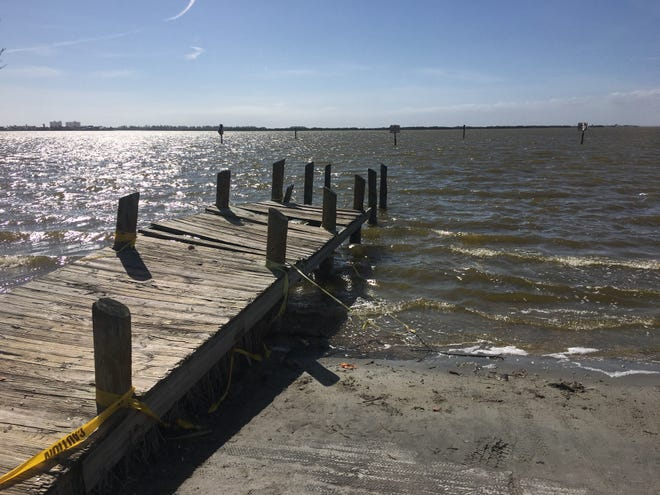 "The Indian River Lagoon has taken on a more brownish color in recent years, as ""brown tide"" algae has bloomed more often, robbing the water of dissolved oxygen fish and other marine life need to respire."