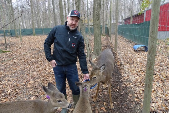 Jody Gregory feeds does at his deer farm, Wooded Acres Whitetails, near Nevada.