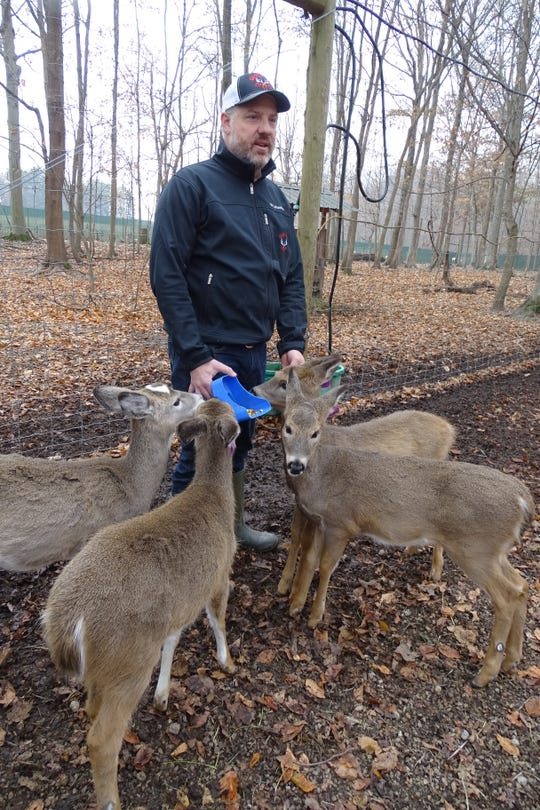 Jody Gregory feeds young does at his deer farm, Wooded Acres Whitetails, near Nevada.