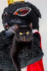 "Obsidian, a cat up for adoption through Fort Collins Cat Rescue, poses with the Rat King from Canyon Concert Ballet's upcoming production of ""The Nutcracker."""