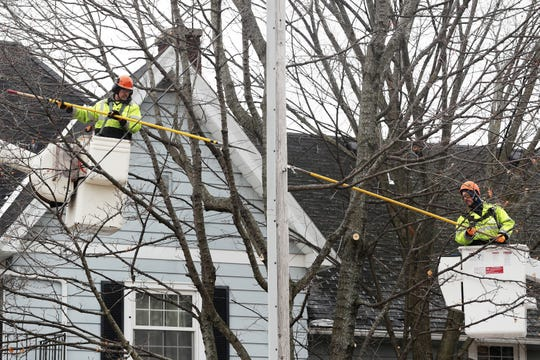 City Forestry Department workers trim trees along Dousman Street in Green Bay in 2018.