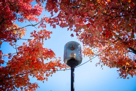 One of the street lamps on Main Street,