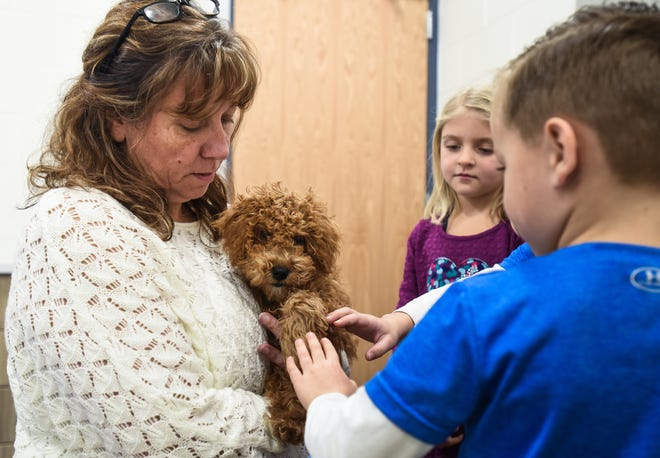 Kathy Wilson, a fourth-grade teacher at Donley Elementary School in East Lansing introduces the school's new 'mascot' to students, Friday, Nov. 22, 2019.  Wilson will act as handler for the four-month-old therapy dog in training, a Miniature Goldendoodle whom students will name next week.