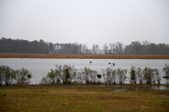 Pirates Wharf, off Whitehaven Road near Quantico, Maryland, will soon be converted to a large park in Wicomico County, but it sits relatively untouched on a rainy afternoon on Nov. 22, 2019.