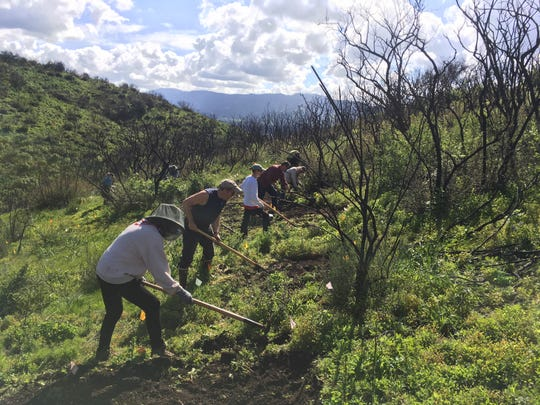 Volunteers work on a new trail named for longtime Ojai resident Allan Jacobs.