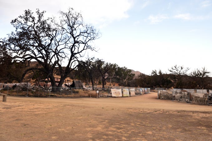 """An oak tree known as the """"Witness Tree"""" towers over the burned remains of a western movie set at Paramount Ranch in the Santa Monica Mountains National Recreational Area. The buildings were destroyed by the Woolsey Fire."""
