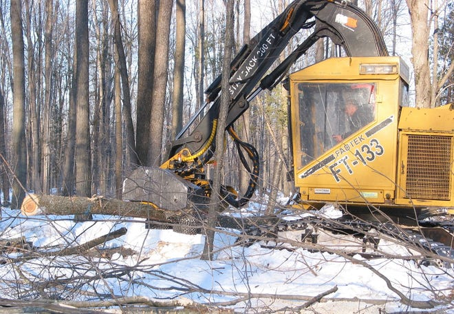 Commercial loggers use a variety of equipment in their operations. A skilled operator uses a processor to cut smaller trees and then cut them to the proper length.
