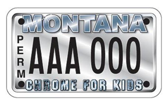 The Chrome for Kids plate.