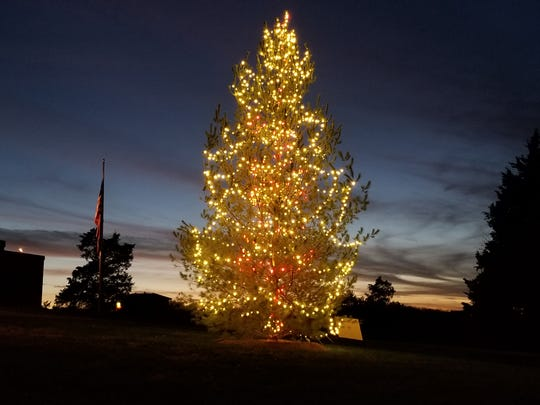 The Branson Junior High School tree is worth visiting on your Christmas tree excursion.