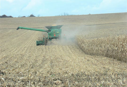 Harvesting performance trial plots conducted by the Extension Service and the College of Agricultural and Life Sciences at the University of Wisconsin – Madison was a challenge this year - just like it was for farmers across the state.