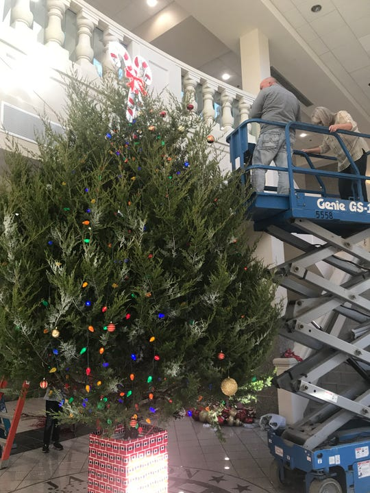 Jackson City employees decorate the live Christmas tree inside City Hall on Nov. 27.