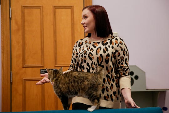 Kennedy Van Meter, co-owner, talks about opening Lazy Cat Lounge, 848 Main St., Wednesday, Nov. 27, 2019 in Lafayette.